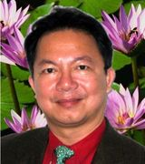 Profile picture for Dr Hanh Vo