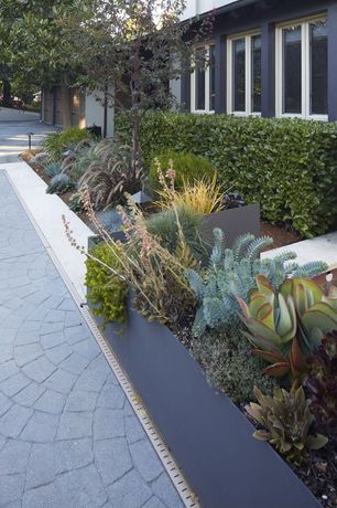 Contemporary Landscape/Yard with exterior stone floors, Pathway