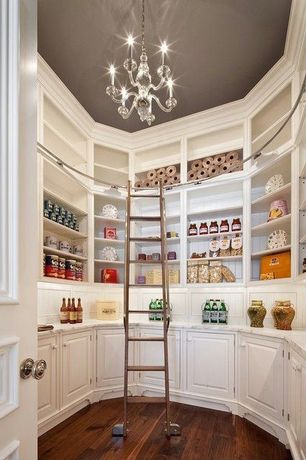 Contemporary Pantry with Built-in shelving, Modern stainless ladders vario sl.6080, Hardwood floors, Raised panel cabinets