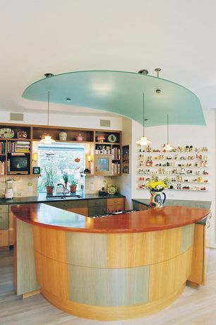 Modern Kitchen with One-wall, Glass panel, electric cooktop, Pendant light, Built-in bookshelf, European Cabinets, can lights