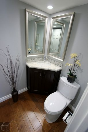 Traditional Powder Room with Flush, Powder room, Paint, partial backsplash, six panel door, Standard height, Undermount sink