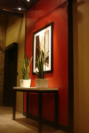 Contemporary Entryway with Paint 2, House of silk flowers matte ceramic cube vase  (, Paint 1