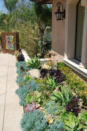 Mediterranean Landscape/Yard with Custom Corten Vertical Succulent Garden, Custom Corten Succulent Sculpture, Raised beds