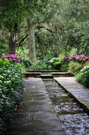 Traditional Landscape/Yard with Pathway, exterior stone floors, Pond