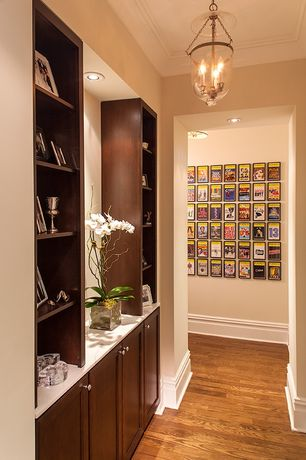 Contemporary Hallway with Hardwood floors, Built-in bookshelf, can lights, Standard height, flush light