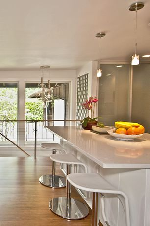 Contemporary Kitchen with Breakfast bar, specialty door, Corian counters, can lights, Pendant light, One-wall