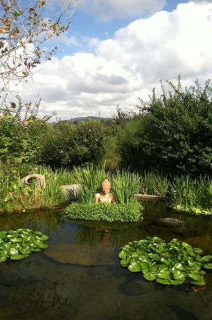 "Eclectic Landscape/Yard with Hardy Water Lilies, Sitting Buddha 29 1/2"" High Outdoor Statue, Pond"