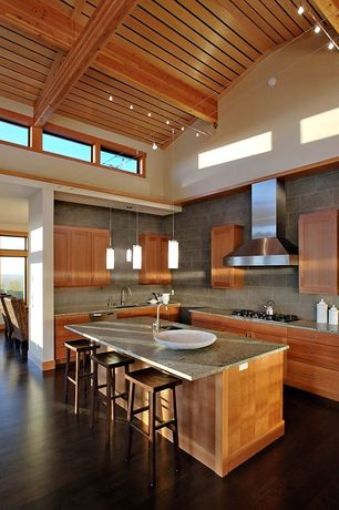 Contemporary Kitchen with Paint 1, European Cabinets, Isaac mizrahi diva chic 3-piece canister set, Slate Tile, Wall Hood