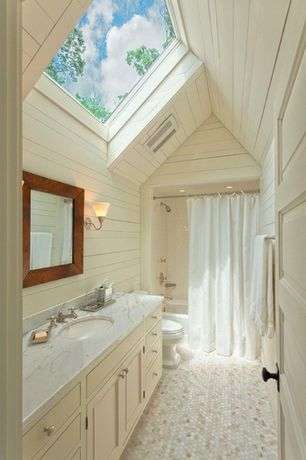 Cottage Full Bathroom with High ceiling, Skylight, penny tile floors, can lights, Complex marble counters, Wall sconce, Flush