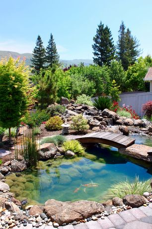 Asian Landscape/Yard with Fountain, Coral coast harrison 4-ft. wood garden bridge, Pathway, Aquatic plants, Fence, River rock