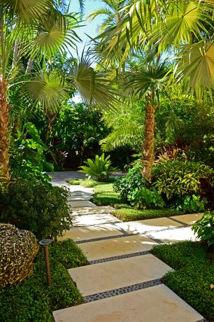 Tropical Landscape/Yard with exterior tile floors, exterior concrete tile floors, Pathway