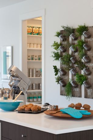 Contemporary Kitchen with Reclaimed Wood Mason Jar Wall Hanging Planter, Paint 1, Corian counters, Corian- Designer White