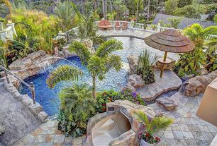 Tropical Swimming Pool with Other Pool Type