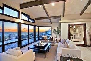 Contemporary Living Room with Hyde Sofa, Hyde Chair, specialty window, Paint, Vaulted wood ceiling, Track lighting