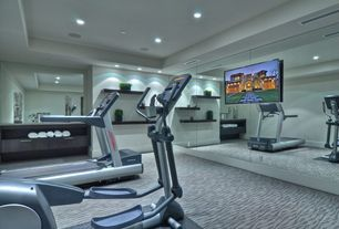 Contemporary Home Gym with tv wall mount, Floor to ceiling mirrors, Carpet, Yowza fitness captiva elliptical