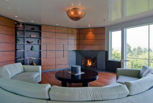 Contemporary Living Room with flush light, Hardwood floors, insert fireplace, can lights, Built-in bookshelf, Fireplace