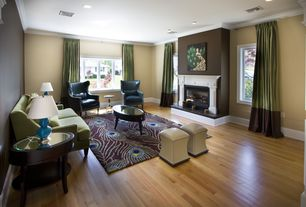 Contemporary Living Room with Paint, Paint 2, Peacock feathers rectangle rug mocha, double-hung window, Fireplace, can lights