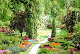 Traditional Landscape/Yard with Private wooded setting, OnlinePlantCenter 5 gal. 3 ft. Tall Emerald Green Arborvitae Shrub