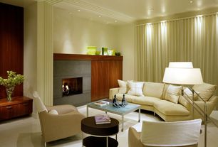 Contemporary Living Room with Standard height, can lights, Fireplace, Carpet, Crown molding, insert fireplace