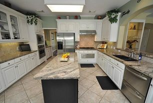 Traditional Kitchen with wall oven, Raised panel, Glass panel, electric cooktop, Framed Partial Panel, Galley, Skylight