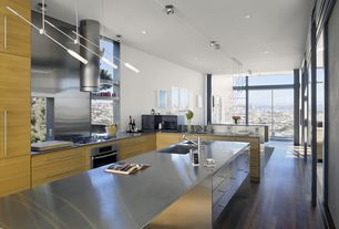 Contemporary Kitchen with Stainless Steel, Stainless steel counters, Kitchen island, U-shaped, Pendant light, Undermount sink