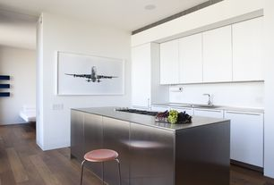 Contemporary Kitchen with Flush, European Cabinets, Stainless steel counters, Kitchen island, electric cooktop, One-wall
