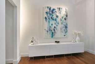 Contemporary Entryway with Hardwood floors, Standard height