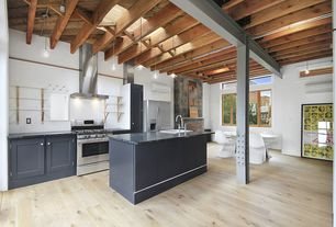 Contemporary Kitchen with Hardwood floors, Builder's pride select maple, can lights, One-wall, Paint, Kitchen island