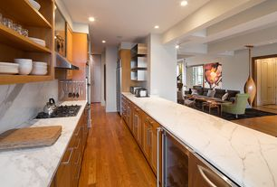 Contemporary Kitchen with can lights, Complex marble counters, full backsplash, Flat panel cabinets, dishwasher, Flush