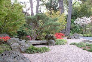 Asian Landscape/Yard with Gravel landscape