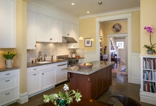 Traditional Kitchen with Wainscotting, Toltec Lighting Stem Mini Pendant With Hang Straight Swivel, Crown molding, Flush