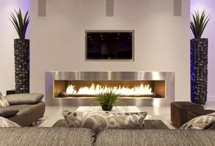 Modern Living Room with insert fireplace, Standard height, Napolean Stainless Steel Fireplace, Fireplace, Paint 2, Paint
