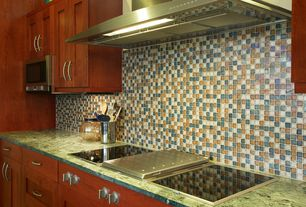 Modern Kitchen with full backsplash, built-in microwave, One-wall, Framed Partial Panel, Flat panel cabinets, Standard height