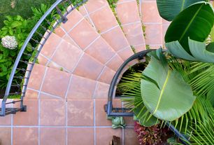 Tropical Staircase with curved staircase, terracotta tile floors, Standard height