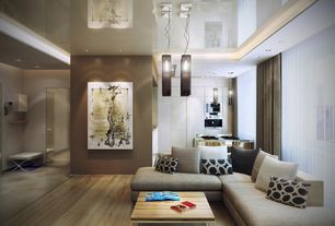 Modern Living Room with Pendant light, Hardwood floors
