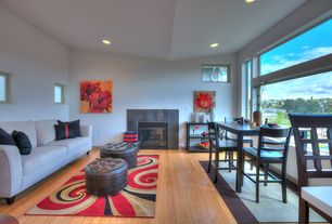 Modern Living Room with Rodeo drive red rug