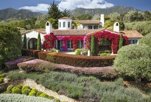 Mediterranean Landscape/Yard with Huckleberry Wallstone, Bougainvillea Scarlett O'Hara, French doors, Arched window, Pathway