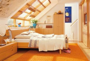 Contemporary Attic with Shag area rug, Built-in bookshelf, Skylight, Hardwood floors