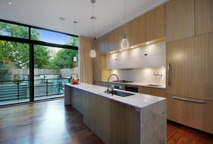 Modern Kitchen with Hardwood floors, Kitchen island, electric cooktop, MS International Marble Calacatta Vagli, One-wall