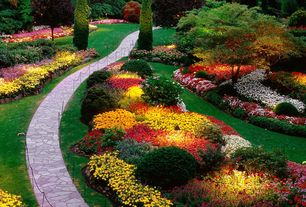 Traditional Landscape/Yard with Pathway