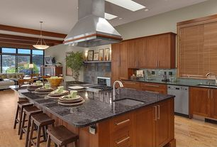 Craftsman Kitchen with Fireplace, One-wall, can lights, Island Hood, Paint, electric cooktop, Simple granite counters, Flush