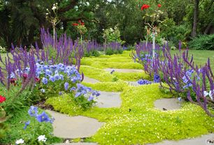 Traditional Yard with Pathway