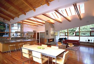 Contemporary Great Room with picture window, Exposed beam, can lights, Hardwood floors, insert fireplace, Casement, Skylight