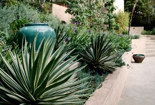 Tropical Landscape/Yard with Bright Edge Yucca Plant, Pathway, Raised beds, Empress Jar - Aqua Finish, Fence