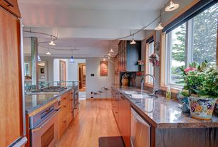 Craftsman Kitchen with warming oven, Complex granite counters, Casement, Paint 1, European Cabinets, double dishwasher, Flush