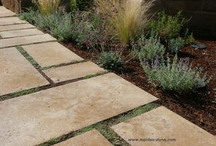 Traditional Landscape/Yard with Pathway, Maiden Stone - Willow Travertine, exterior tile floors, Woolly Thyme