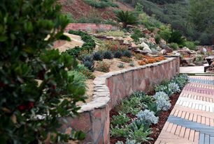 Eclectic Landscape/Yard with Succulents, Pathway, Xeriscape landscaping by Singing Gardens, Cactus, Modular Concrete Pavers