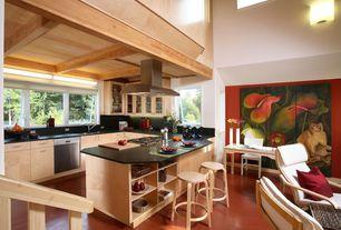 Modern Kitchen with partial backsplash, Island Hood, single dishwasher, electric cooktop, Casement, Flush, Wall sconce