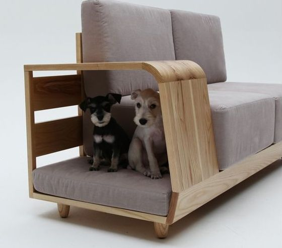 Contemporary Living Room with Min n mun sofa with attached dog bed