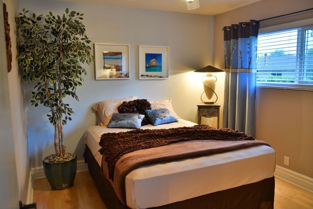 Contemporary Guest Bedroom with Casement, Standard height, Hardwood floors, Ceiling fan
